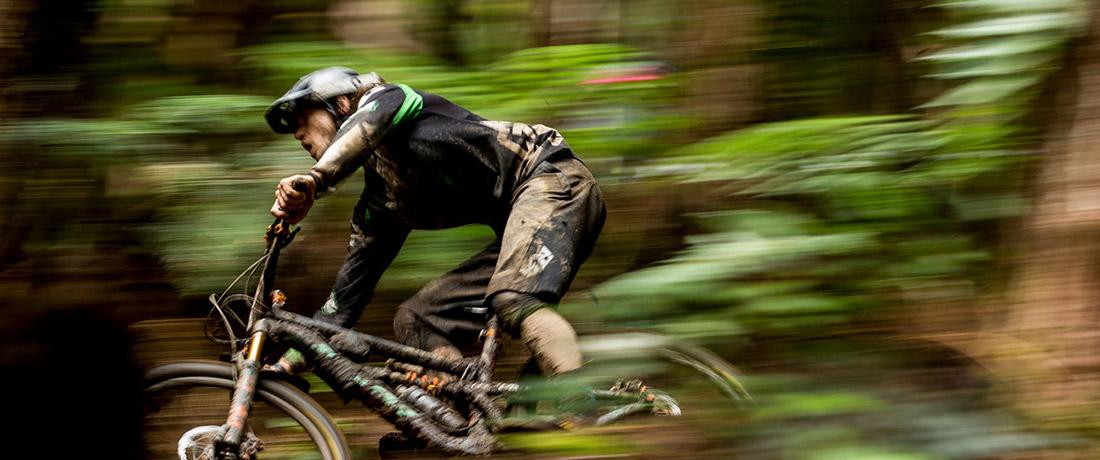 Demo Bikes LTM Racing